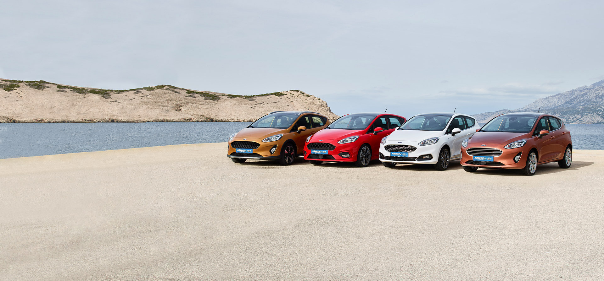 Ford Fiesta Familie